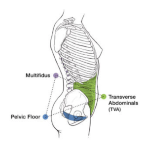 Is Your Pelvis The Key To Unlocking Chronic Lower Back Hip